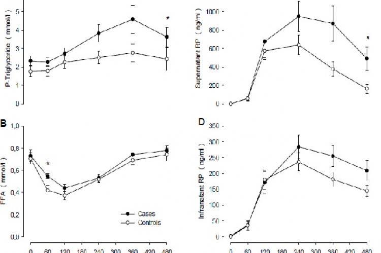 Eight-hour responses of P-triglyceride