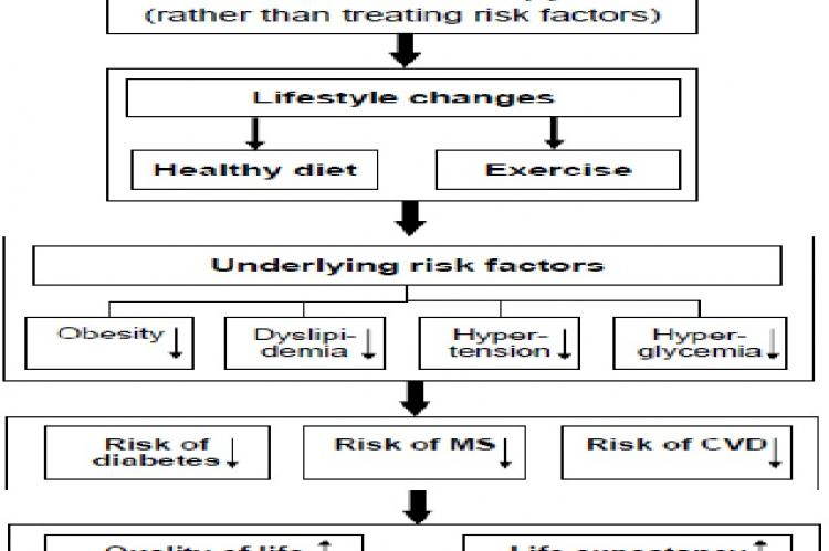 A conceptual model for lifestyle changes and better health