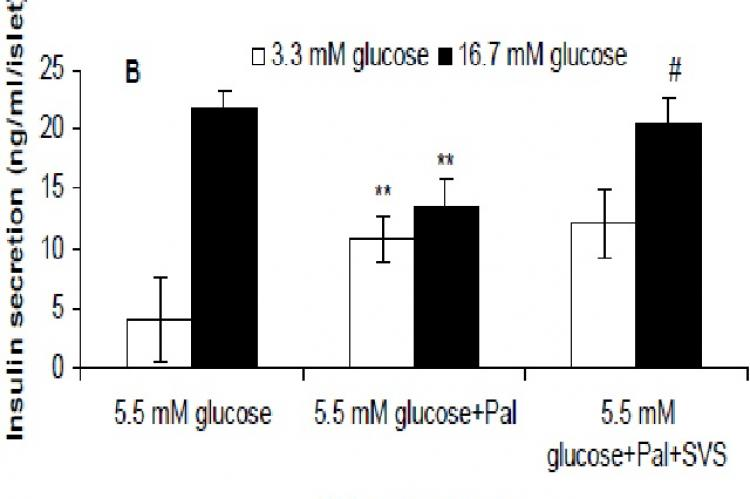 Rat islets were pretreated with 5.5 mM glucose supplemented with or without 1.0 mM palmitate for 24 h, 72 h, or 120 h, respectively