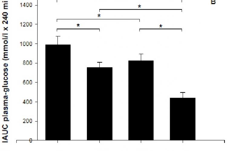 Intra-arterial glucose tolerance tests in type 2 diabetic GK rats after 4 wk of treatment with four different diets