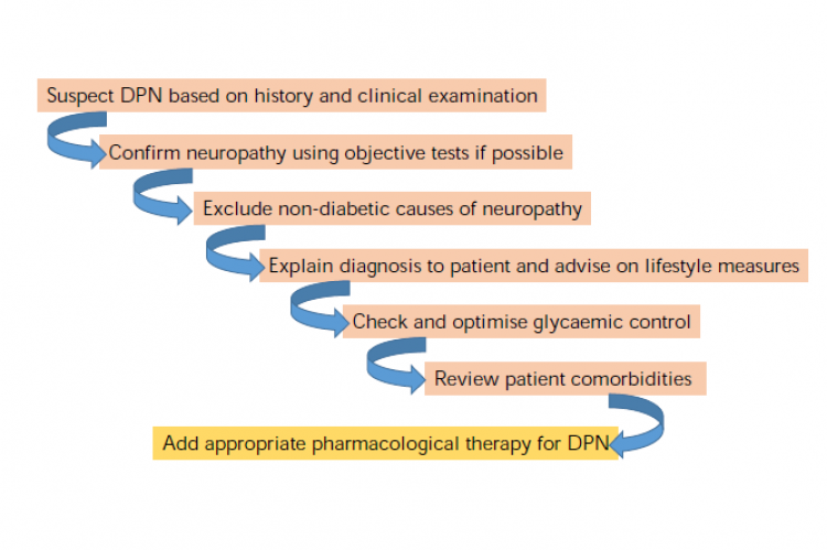 Stepwise approach to diagnosis and management of diabetic peripheral neuropathy (DPN)