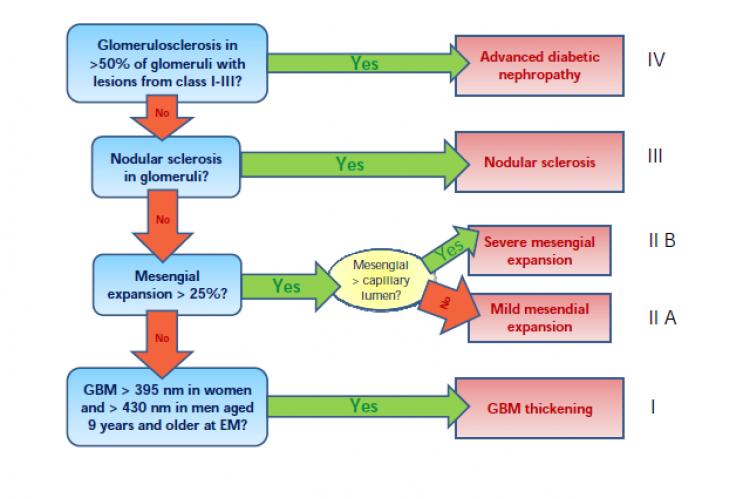 Pathologic classification of diabetic nephropathy