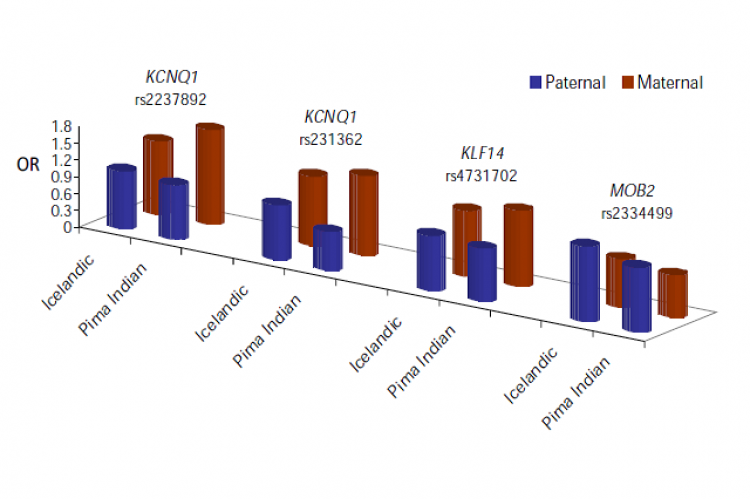 Genetic variants showing parent-of-origin effects for the risk of type 2 diabetes.