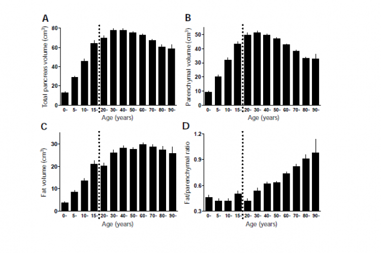 Total, parenchymal, and pancreatic fat volumes in each age decile