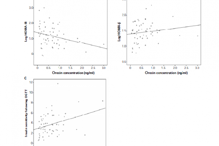 Correlations between serum orexin concentrations and indices of insulin resistance/sensitivity