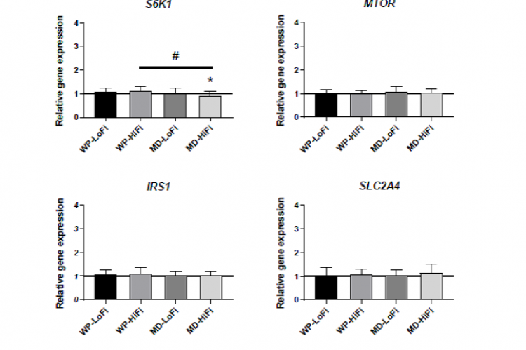 The Combination of Whey Protein and Dietary Fiber Does Not Alter Low-Grade Inflammation or Adipose Tissue Gene Expression in Adults with Abdominal Obesity