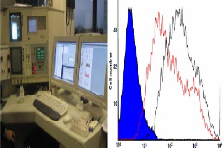 The image shows the Becton Dickenson FACS Vantage used in the routine analytical testing for IC2 autoantigen expression in vitro