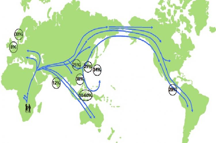 The prevalent rate of the mtDNA 16189 variant traced along the ancient path of human migration