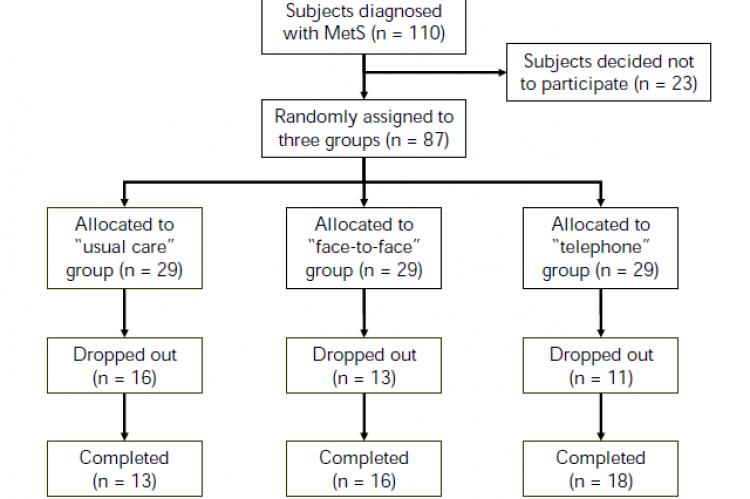 Flow of participants through the study